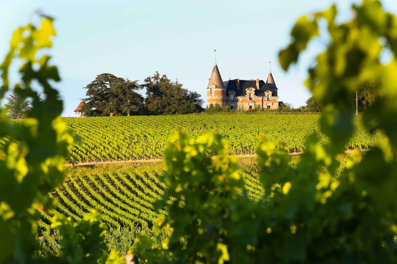 Paysage Bordeaux