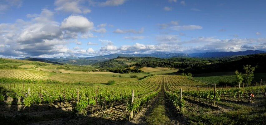 Paysage Limoux