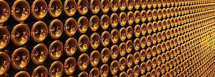 champagne-vignerons