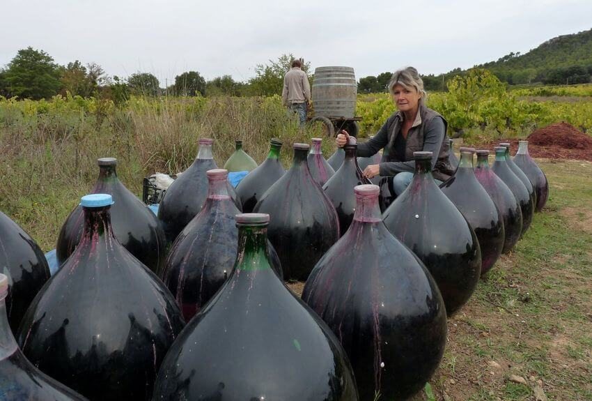 Des grosses bombonnes en verre contenant du vin rouge pour le faire vieillir